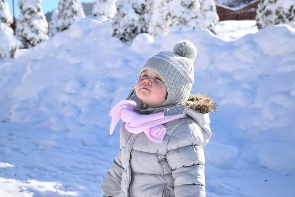 snow-1217124_960_720