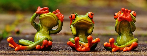 frogs-1274769_960_720