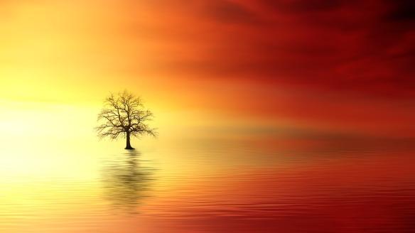 sunset-3156440_1280